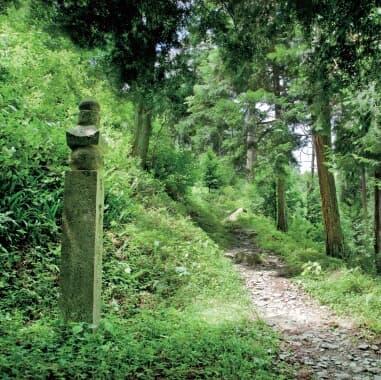 【和歌山「地名」ケンミン性】歴史的「感動」が地名の由来!! 万葉集、聖武天皇、秀…