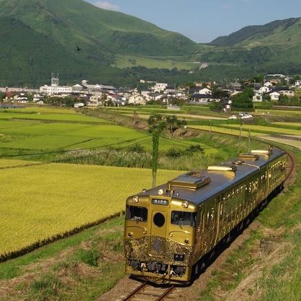予約が取れない! でも今すぐ乗りたい‼️  憧れの観光列車 《3選》!!!【『一…