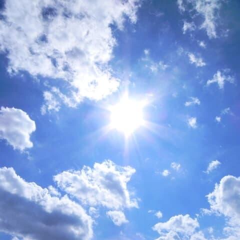 「一年の中で一番昼が長い日」夏至にまつわる珍名さん