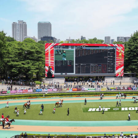8月の新潟開催からついに競馬場に歓声が戻る⁉