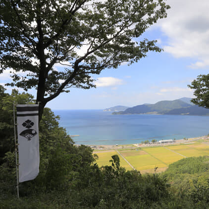 NHK大河ドラマ「麒麟がくる」明智光秀も奮闘 金ヶ崎の戦い