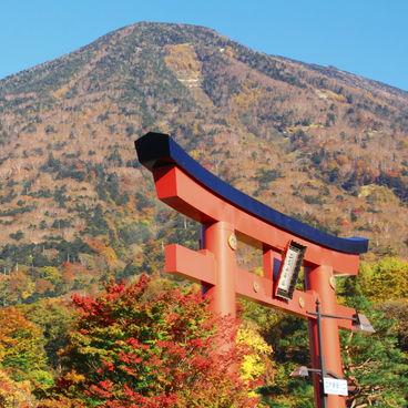 魅力度ランキングワースト5「栃木県」は県民性でソンしてる