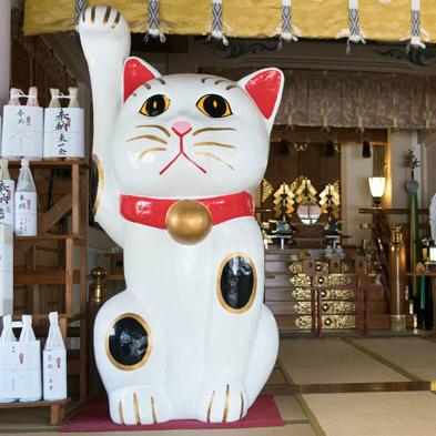 境内は猫だらけ!? 縁結びで有名なパワースポット「今戸神社」の秘密