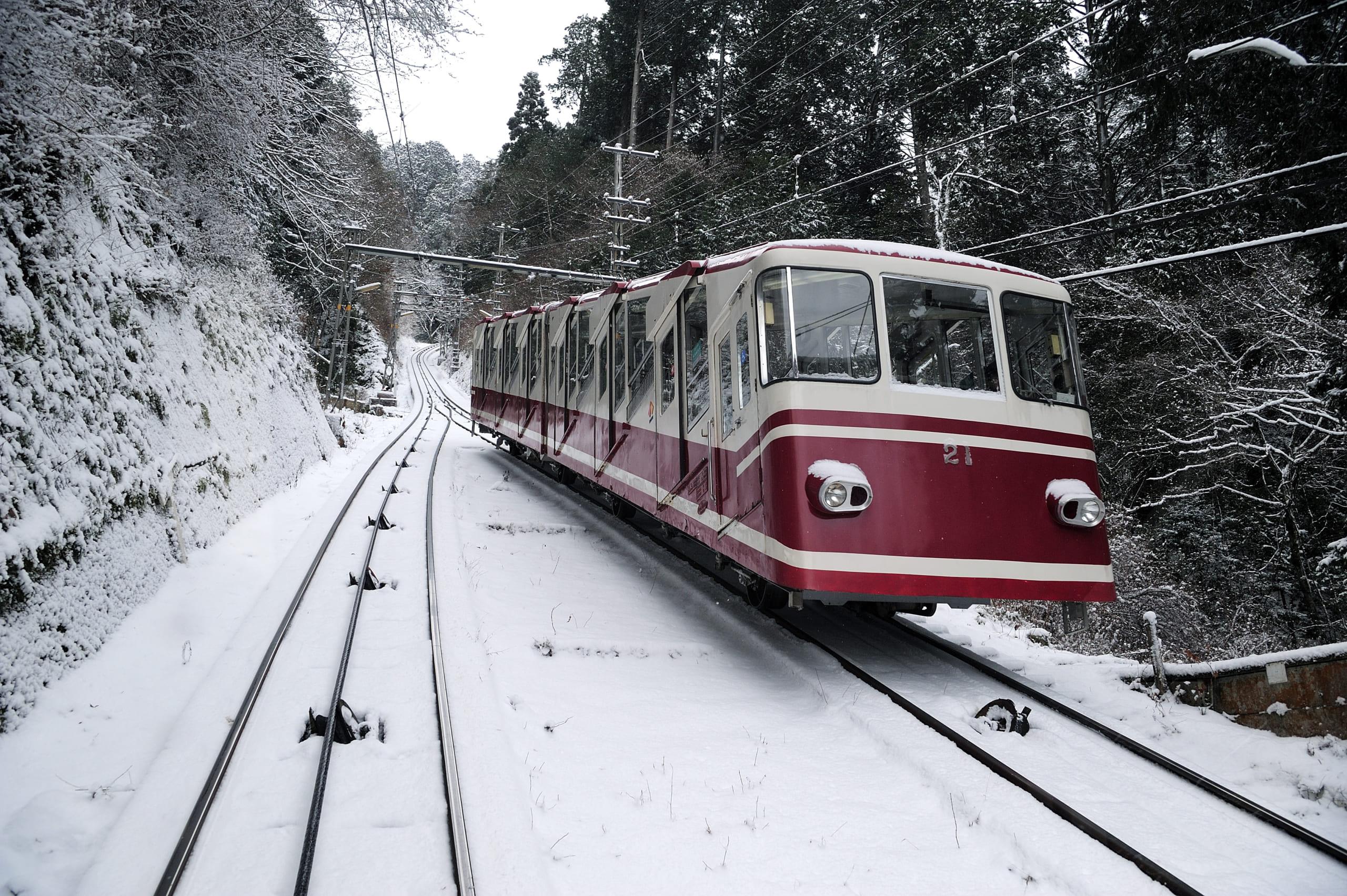 日本人の正月参拝の起源<br />初詣列車で開運旅