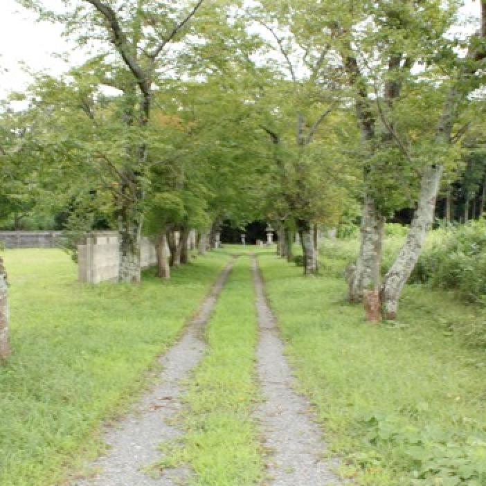 蒲生氏郷のふるさと・日野⑥日野城の壱<br />