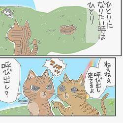 【ペット・ロス】47歳、人生最大の喪失感!! 19年間ともに暮らした愛猫 「キクラゲ」の死