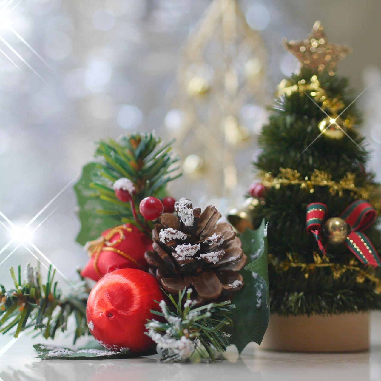 ひとりぼっちのクリスマス、みんなどうしてる? おすすめの過ごし方・スポットを紹介!