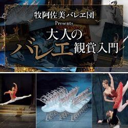 誰でも楽しめるバレエの世界──最初の一歩<br />―大人のバレエ鑑賞入門―