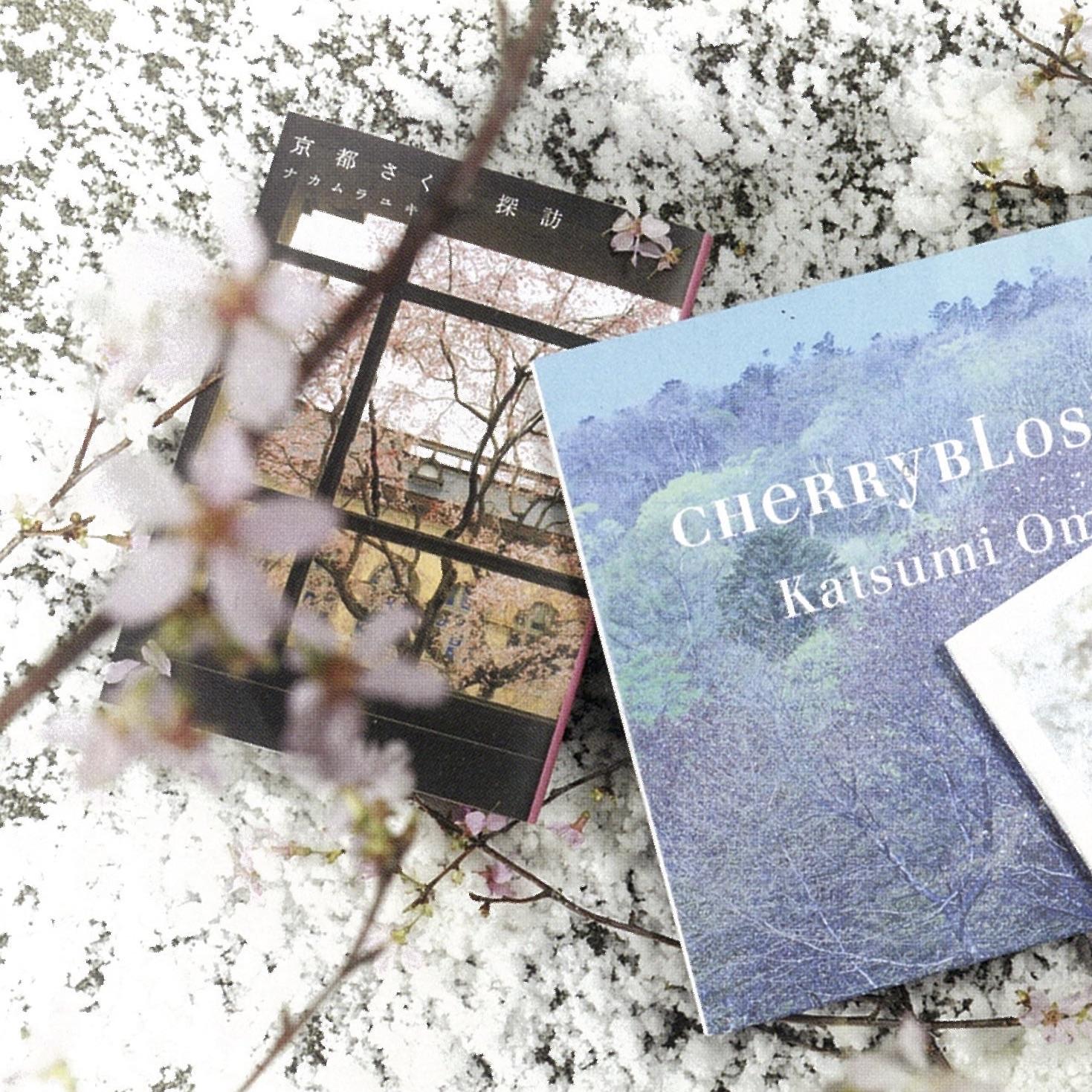 散りゆく桜もまた良し…お花見の余韻に浸れる名著3選
