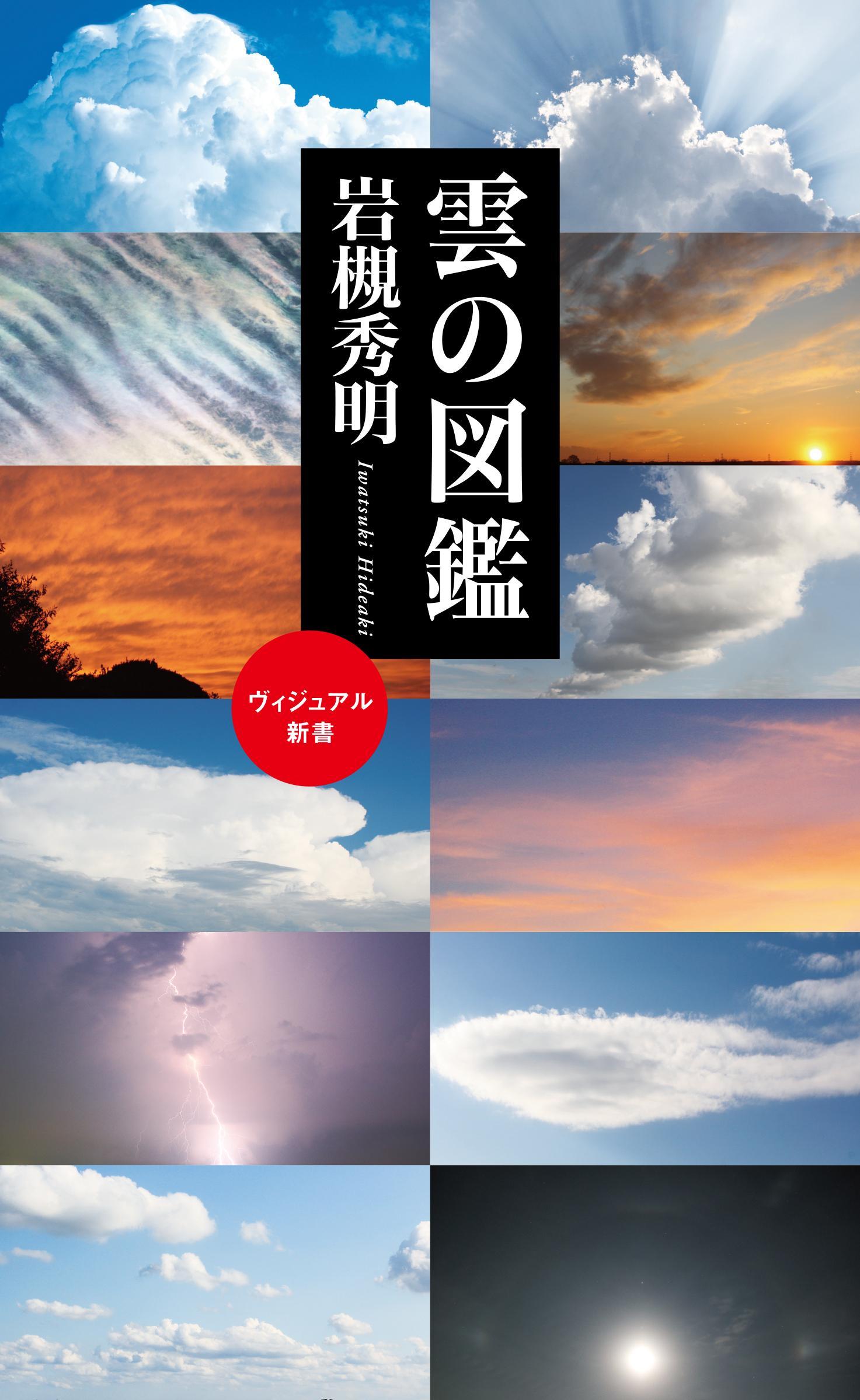 雲が絶対好きになる!雲の楽しみ方のススメ!【自由研究のヒント①】