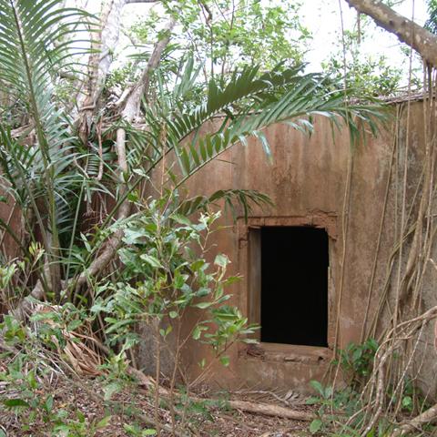 戦争当時の遺物がそのまま残る亜熱帯の要塞