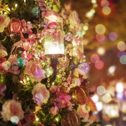 こんなクリスマスは日本だけ?