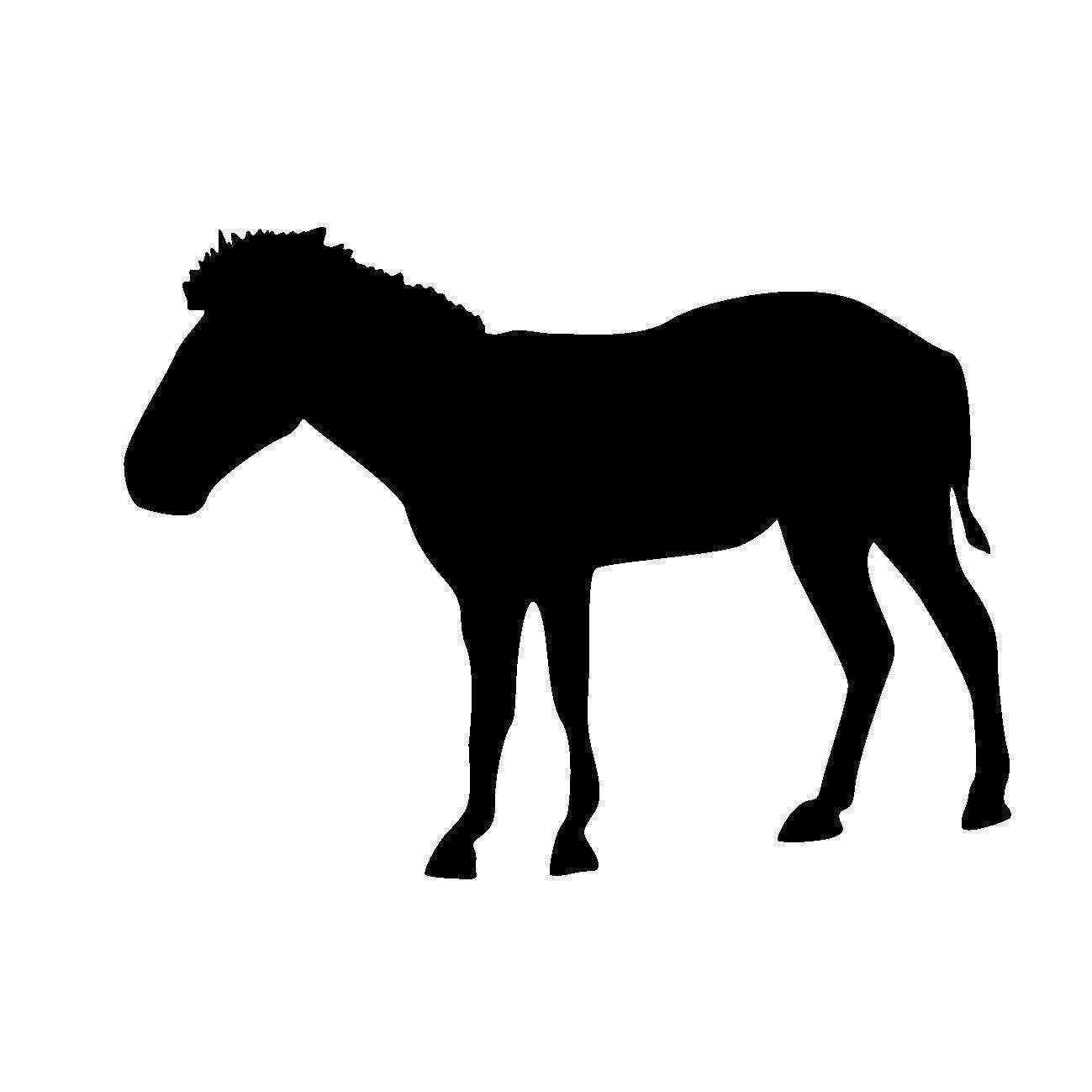 馬のアソコにあだ名をつけて遊ぶ、江戸時代の尼僧たち