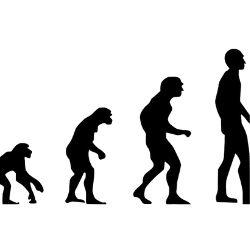 """人類の進化と""""幸福度""""と政治<br />~適菜収と清水忠史が語る~"""