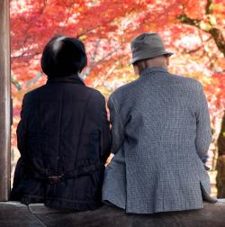 野村克也夫妻の命を奪った心臓の病。決して「突然死」ではなかった、その理由とは