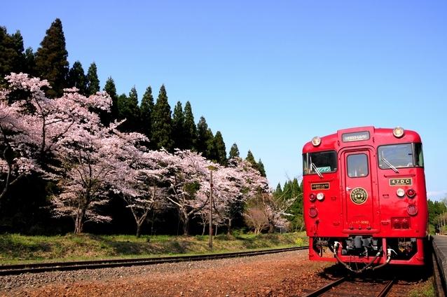 「日本三大車窓」を望む山あいの秘境路線