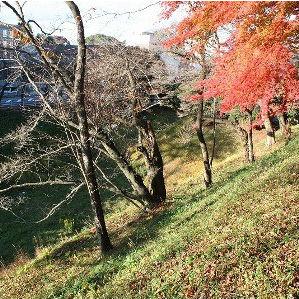 関ヶ原合戦の構図と「太閤検地」