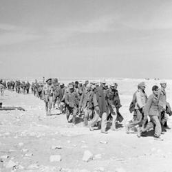 北アフリカの枢軸軍敗退の序曲となった第2次エル・アラメイン戦