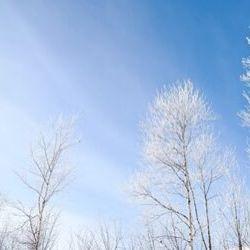 『冬のソナタ』がヒットした理由から見る日本と韓国