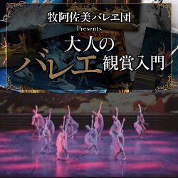 西欧で生まれ、ロシアを経て 日本で花開いた百年の歴史<br />―大人のバレエ鑑賞入門―