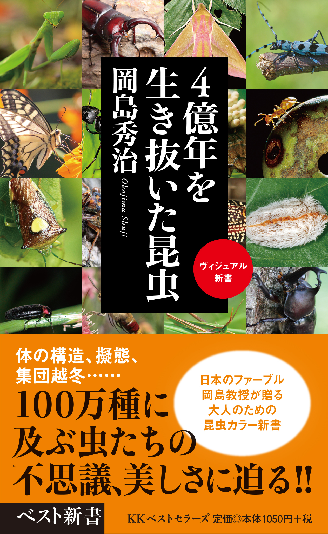 「4億年を生き抜いた昆虫」の著者、岡島秀治先生の講演会が行なわれます。