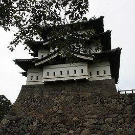 桜のせいで弘前城が見えない!?