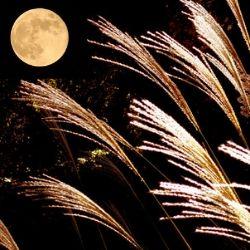 なぜ「月見る月はこの月の月」なのか?<br />~9月の行事を学びなおす~