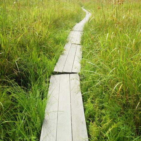 道の道とすべきは常の道にあらず
