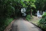 歩いて、歩いて。千葉は袖ケ浦市で、源頼朝伝説が残る「万騎坂」をたどった