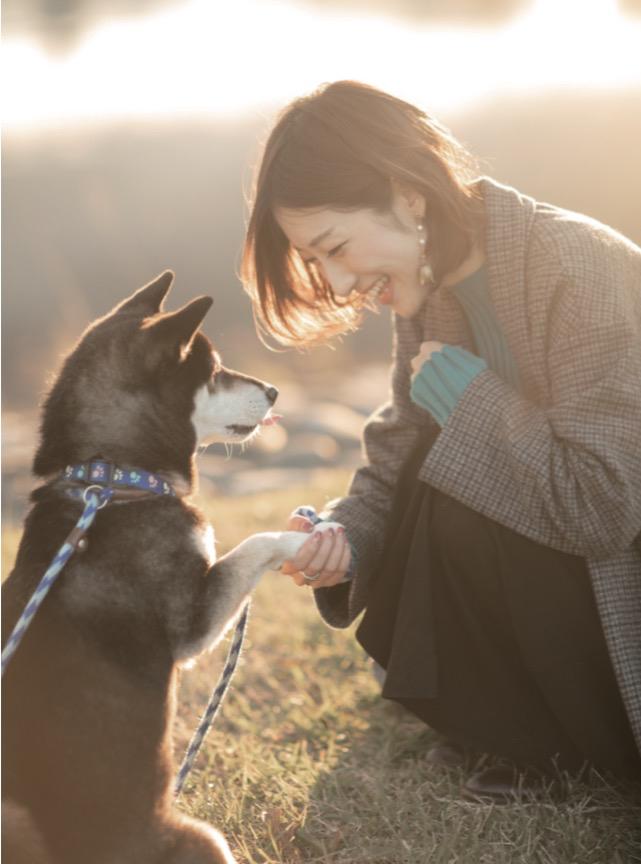 柴犬ライフ~どれだけ好きなのよ、柴のことが~の目次画像0