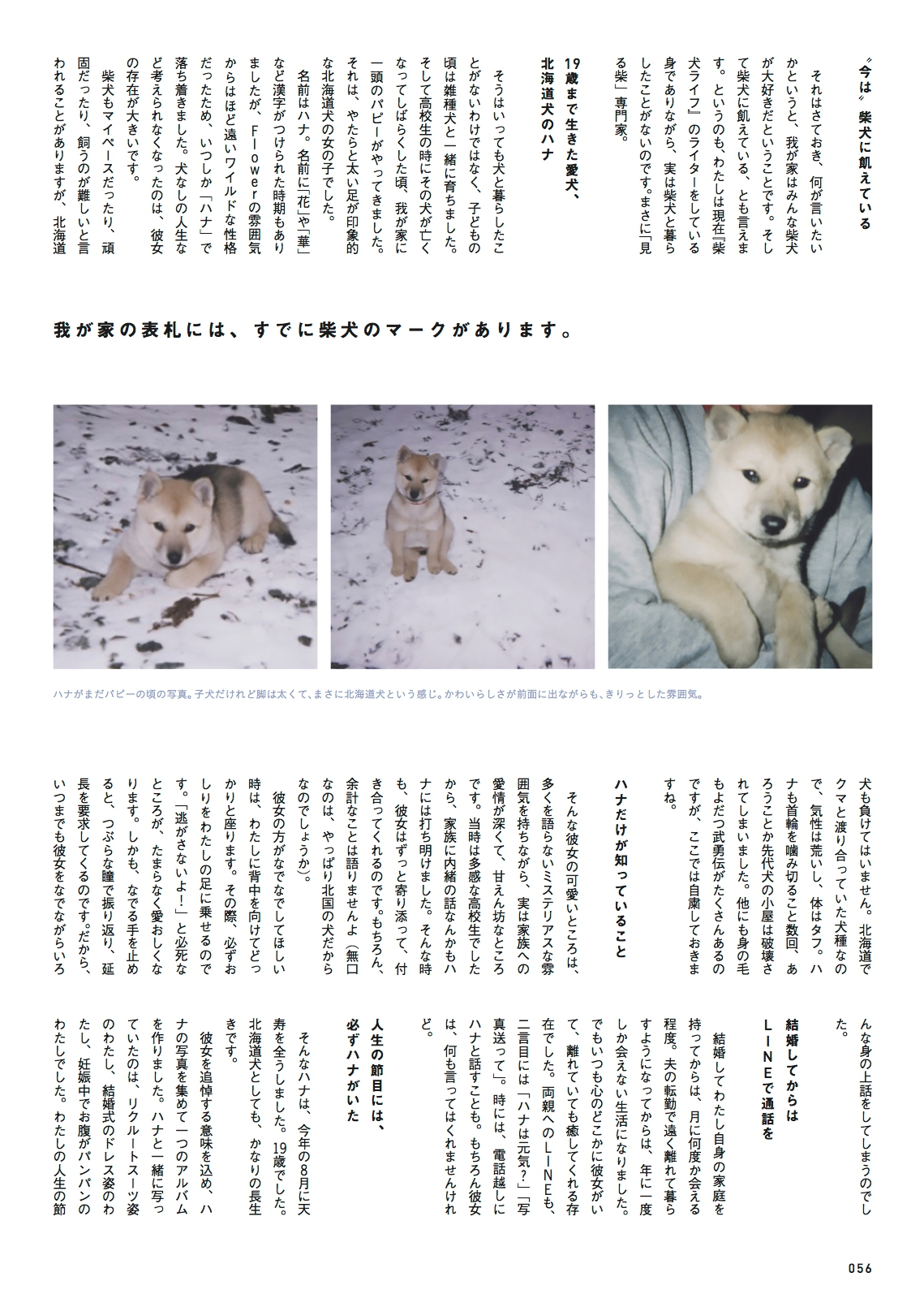 柴犬ライフ vol.2 冬号の目次画像1