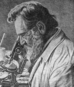 100年前から唱えられていたヨーグルト「不老長寿論」