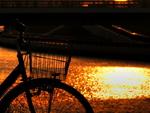 自転車は車道を走れと言うけれど…「雪国」では別の問題が。
