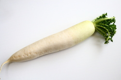 """世にも恐ろしい「脚気」に苦しんだ江戸の人々を救った""""ある野菜"""""""