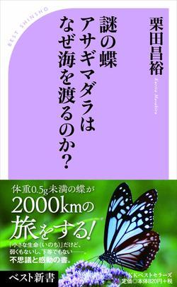 「小さな生命」だけど弱くもないし、下等でもない。蝶の不思議