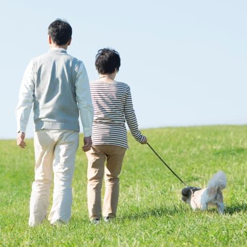 「朝散歩」が健康に役立つ最強ルーティンの理由
